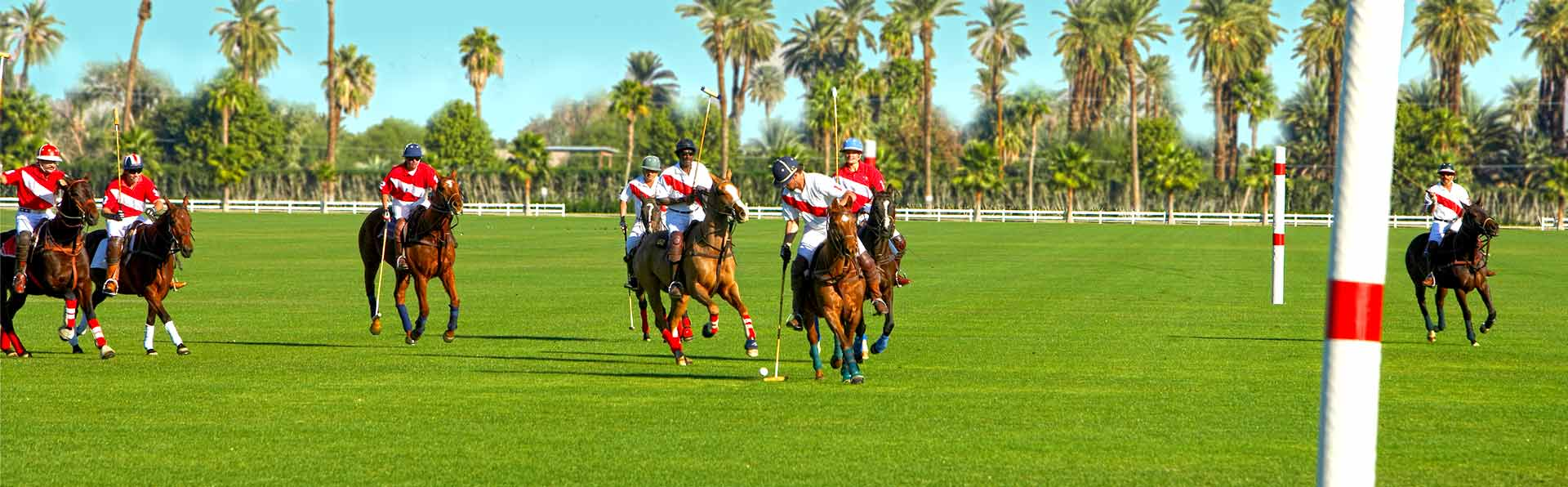 Lakewood Ranch Polo Game